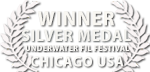 liquid motion film awards best film Chicago