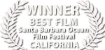 liquid motion film awards california
