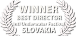 liquid motion best film slovakia film festival