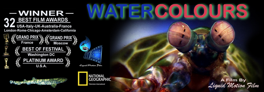 Liquid Motion Film Water Colours National Geographic FOX awards