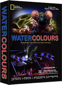 liquid motion film water colours